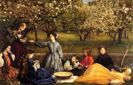 apple-blossoms-1859